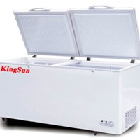 Tủ đông Kingsun KS-BD/C-400D