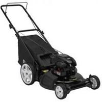 Máy cắt cỏ đẩy Poulan PO550N21RH3
