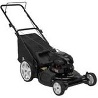 Máy cắt cỏ Poulan TEP-802-0130
