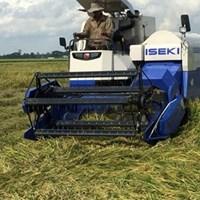 Máy gặt lúa ISEKI HC-80P
