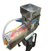 Máy nghiền vắt nghệ liên hoàn Inox NG-250