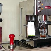 Máy xay cà phê FRED PL043MMI
