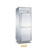 Tủ đông 2 cửa luxury R020-2
