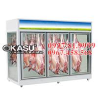 Tủ mát trưng bày thịt tươi OKASU - 09FE-2C
