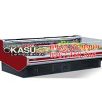 Tủ mát trưng bày siêu thị OKASU- 09XG-2.0M