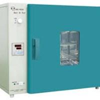 Tủ sấy đối lưu cưỡng bức 250 độ, 50 lit DHG-9053A