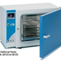 Tủ sấy thường Digitheat-TFT 2001255 Selecta-Tây Ban Nha