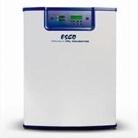 Tủ ấm CO2 CelCulture Esco CCL-170B-9-NF